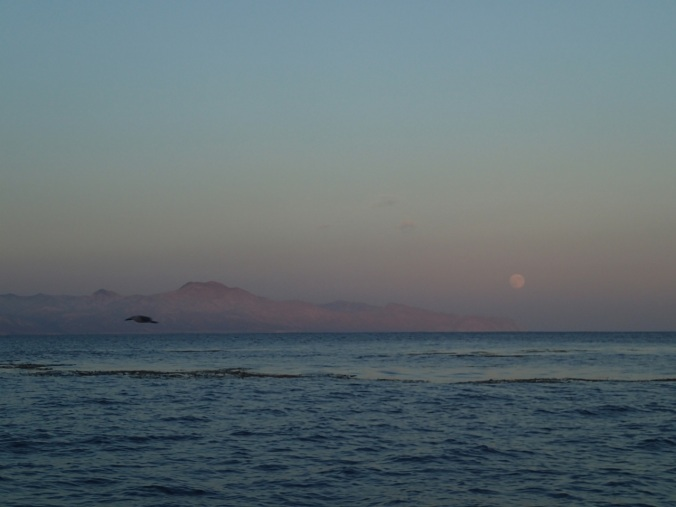 Full Moon rise looking east to Santa Cruz island