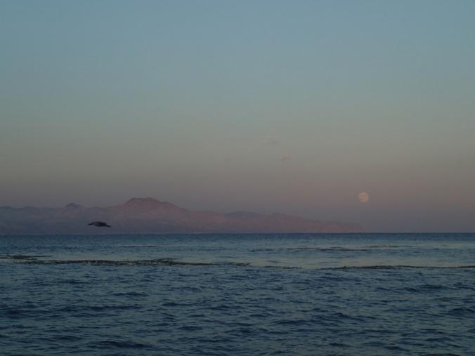 Full Moon rise looking east to Santa Cruz island