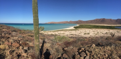 Isla Espiritu Santu was like the landscape of the American Southwest meets a calm, tropical sea.