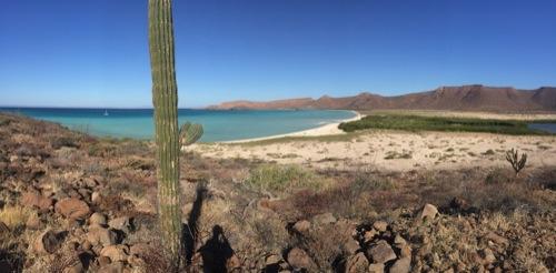 Isla Espiritu Santu was like the landscape of the American Southwest meets a calm, tropical sea.