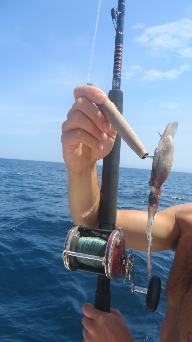 The simple cedar plug, our most prolific producer.  The action drives fish to bite, here we've rigged it up with some squid.
