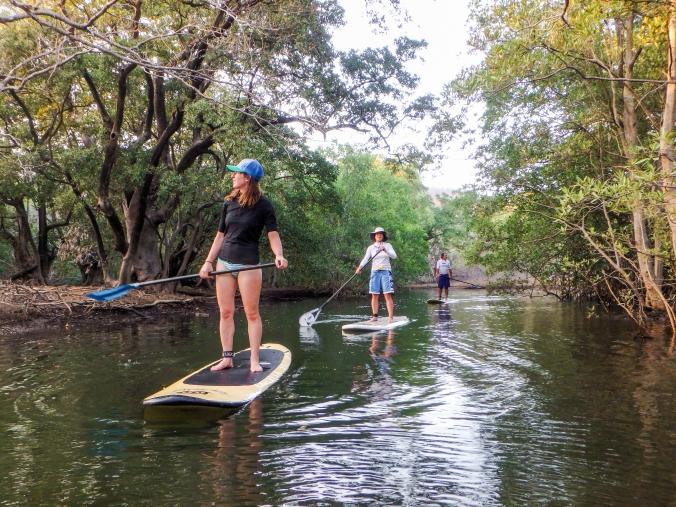 Cruising Mangroves in Bahia Santa Elena
